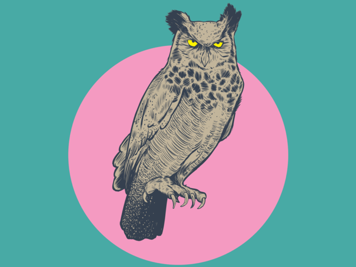Owl Play Screenprint